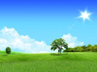 обои Радужный летний пейзаж фото