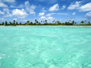 обои Волшебное прозрачное тропическое море фото