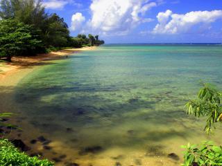 обои Прозрачное тропическое море,   где видно каждый камушек фото
