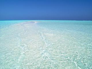 обои Теплое тропическое море фото