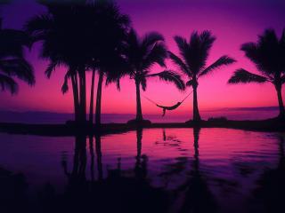 обои Удивительный рассвет в тропиках,   силуэт в гамаке фото