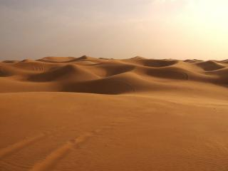 обои Барханы знойной пустыни фото