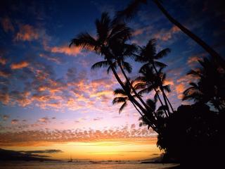 обои Тропический остров под закатным Солнцем фото