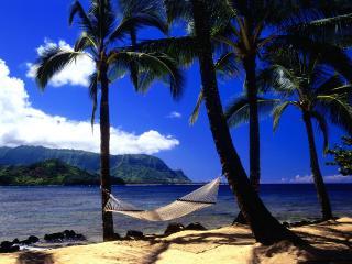 обои Гамак на райском островке фото