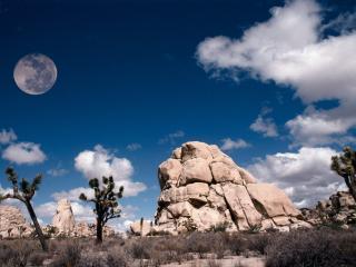 обои Луна над пустыней днем фото