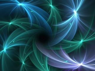 обои Лучевые медузы фото