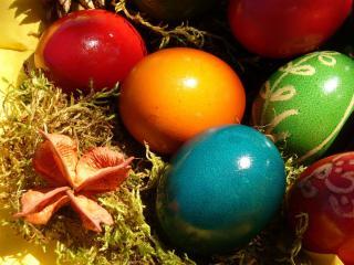 обои Цветные яйца к пасхе фото