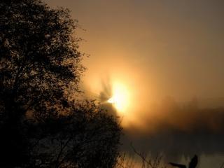 обои Туманный закат фото