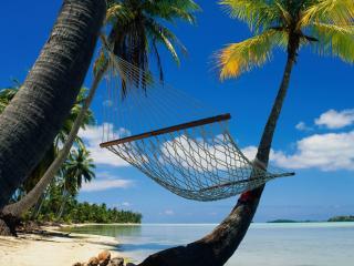 обои Гамак между пальм в тропиках фото