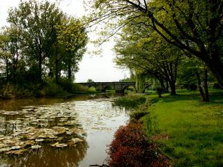 обои Мост в парке и река фото