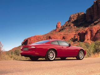 обои Красный Ягуар у подножья каньона фото