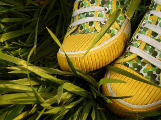 обои Желто-зелёные кеды на траве фото