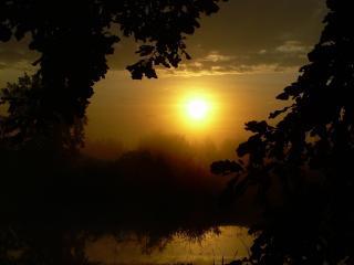 обои Раннее туманное утро фото