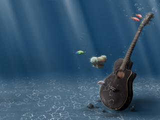 обои Подводное соло фото