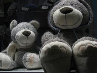 обои Плюшевые медведи фото