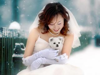 обои Невеста с щенком фото