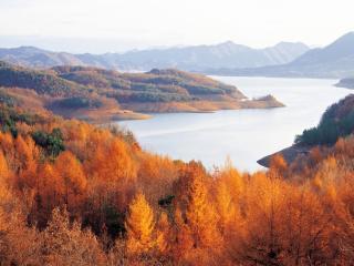 обои Осень рыжая в горах фото