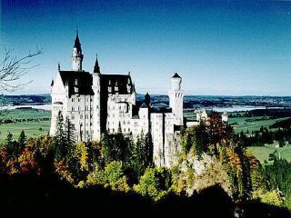 обои Древний замок на склоне леса фото