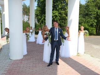 обои Много невест и один жених фото