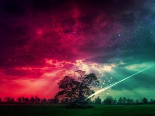 обои Звездное небо африки