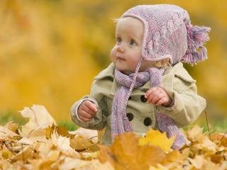 обои Малыш в листьях фото