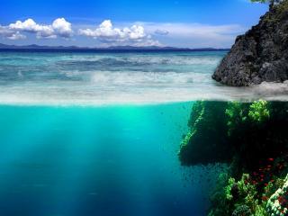 обои Подводная красота фото