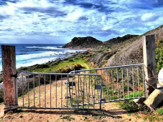 обои Старые ворота на дороге к морю фото