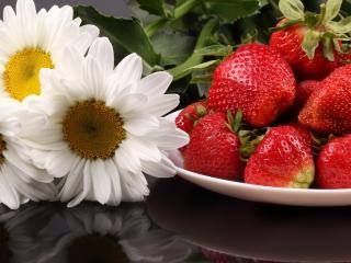 обои Первые плоды и цветы лета фото
