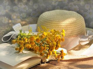 обои Книга,   шляпа и цветы - набор леди фото