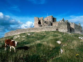обои Замок Кашел в Ирландии фото