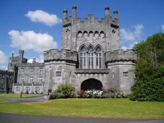 обои Замок Килкенни в Ирландия фото