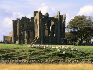 обои Развалины замка Бервик-апон-Твид в Ангии фото