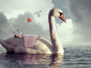 обои Девочка на лебеде фото