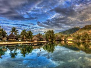 обои Курортный рай фото