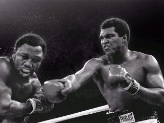 обои Мухаммед Али Джо Фрейзер,   1975год  бой,   удар фото