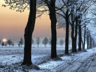 обои для рабочего стола: Зимняя дорога