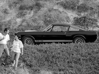 обои Shelby GT350H люди фото