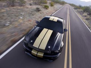 обои Shelby GT-H дорога фото
