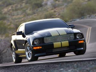 обои Shelby GT-H на обочине фото