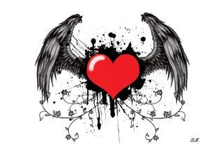 обои Сердце с крыльями на белом фоне фото