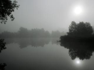 обои Непроглядный туман над озером фото