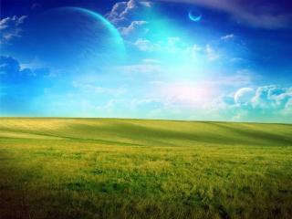 обои Зеленое поле фото
