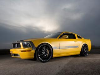 обои Parotech Cesam Mustang желтый фото