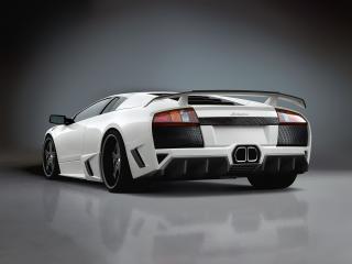 обои Premier4509 Lamborghini Murcielago зад фото
