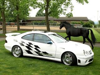 обои Kunzmann Mercedes-Benz CLK-Klasse (C208) конь фото