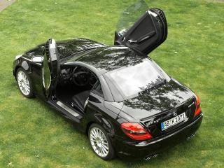 обои Kunzmann Mercedes-Benz SLK-Klasse (R171) на траве фото