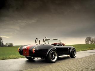 обои Weineck Cobra 780 cui Limited Edition зад фото