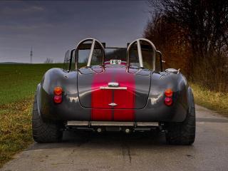обои Weineck Cobra 780 cui Limited Edition сзади фото