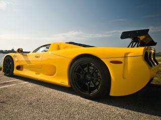 обои Mosler MT900S желтая фото