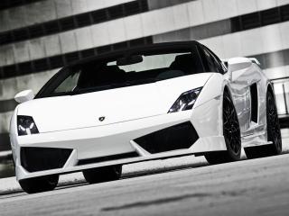 обои BF Performance Lamborghini Gallardo GT600 Spyder перед фото